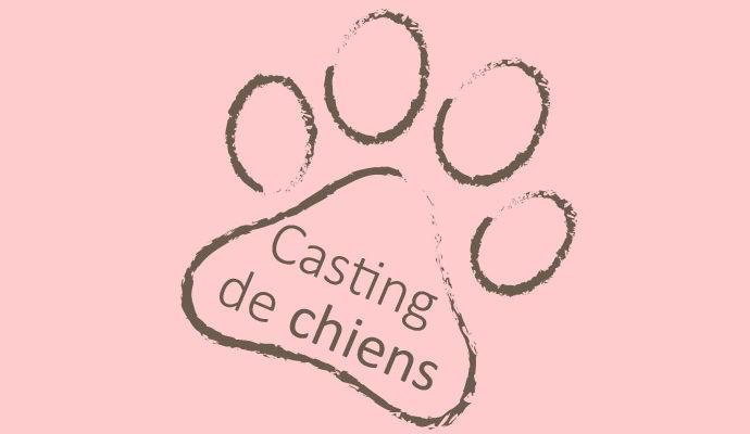EXCLUSIF : Casting de chiens
