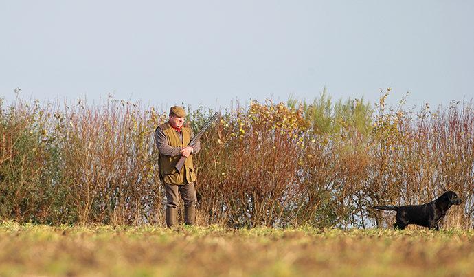 Adaptations de la pratique de la chasse au déconfinement partiel