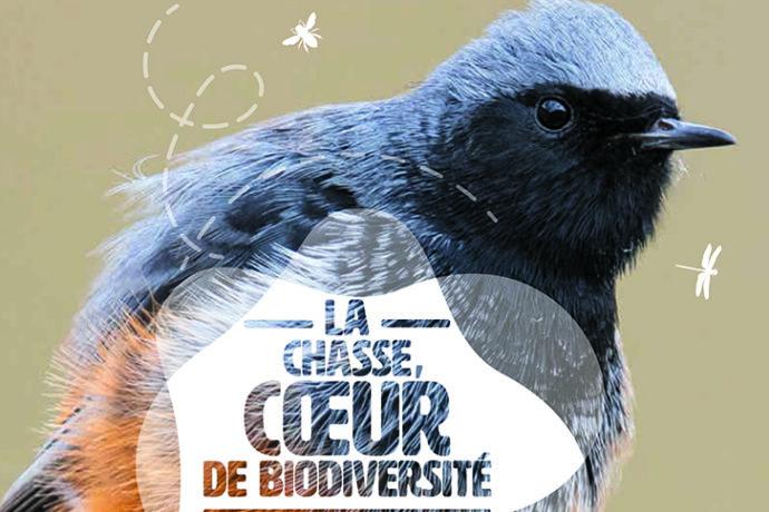 La chasse, coeur de biodiversité